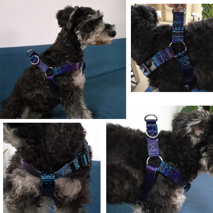 dog harness (22)