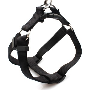 Factory best selling Vape Holders Lanyard - Customized heat transfer print durable webbing large dog harness pet – February Webbing