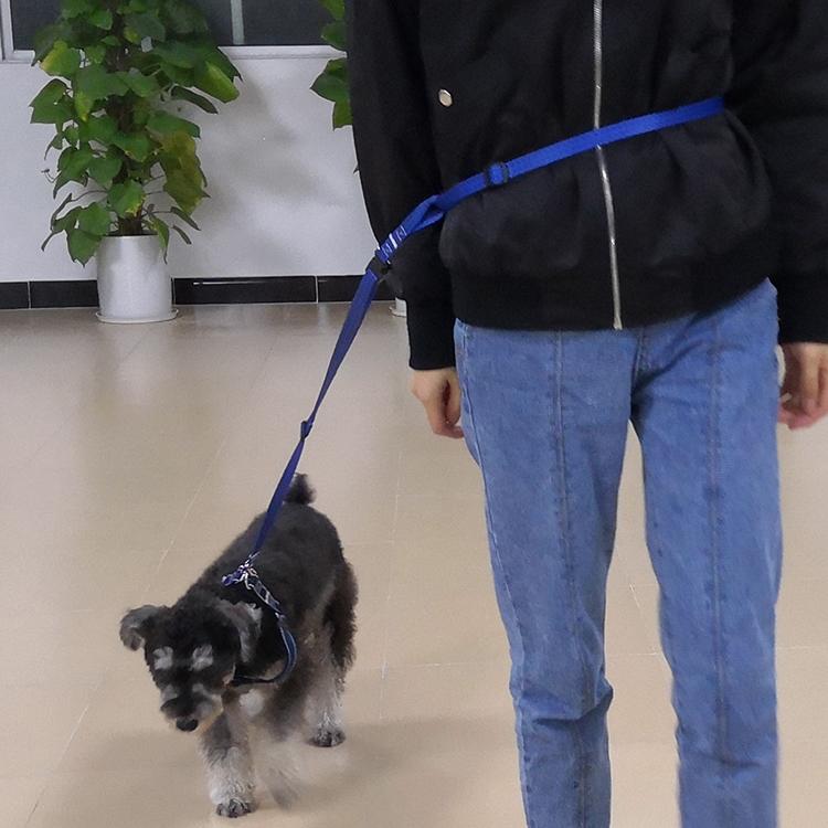 running dog leash (43)