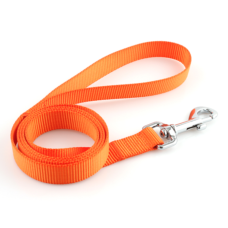 China Supplier Festival Woven Wristband - Premium polyester webbing dog cat pet leashes stocked for training – February Webbing
