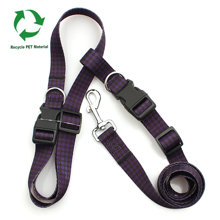 2017 Good Quality Lanyard Pen Holder - Manufacture custom RPET recycle hands free running dog leash – February Webbing