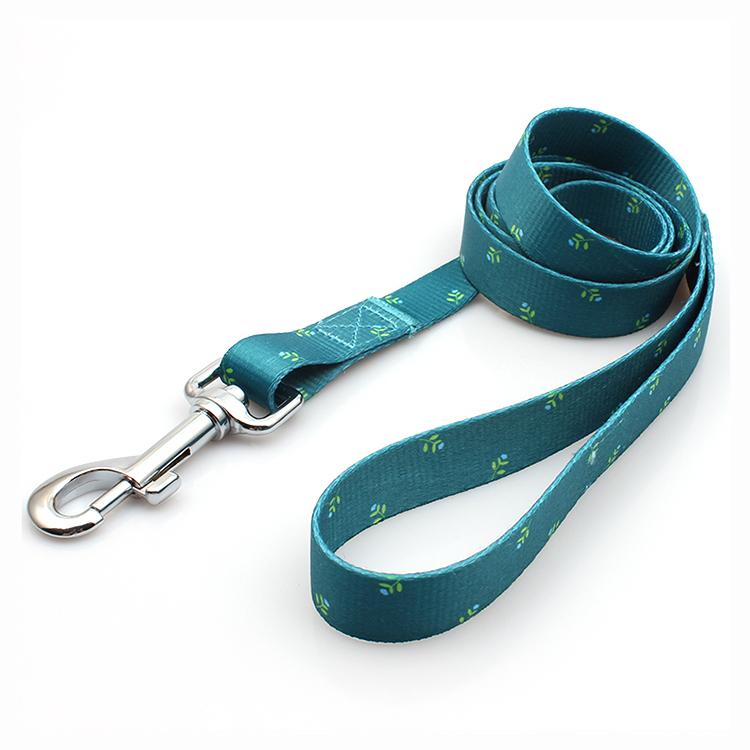 Big Discount Recycle Dog Collar - Fashion design comfortable portable heat transfer dog leash printed – February Webbing