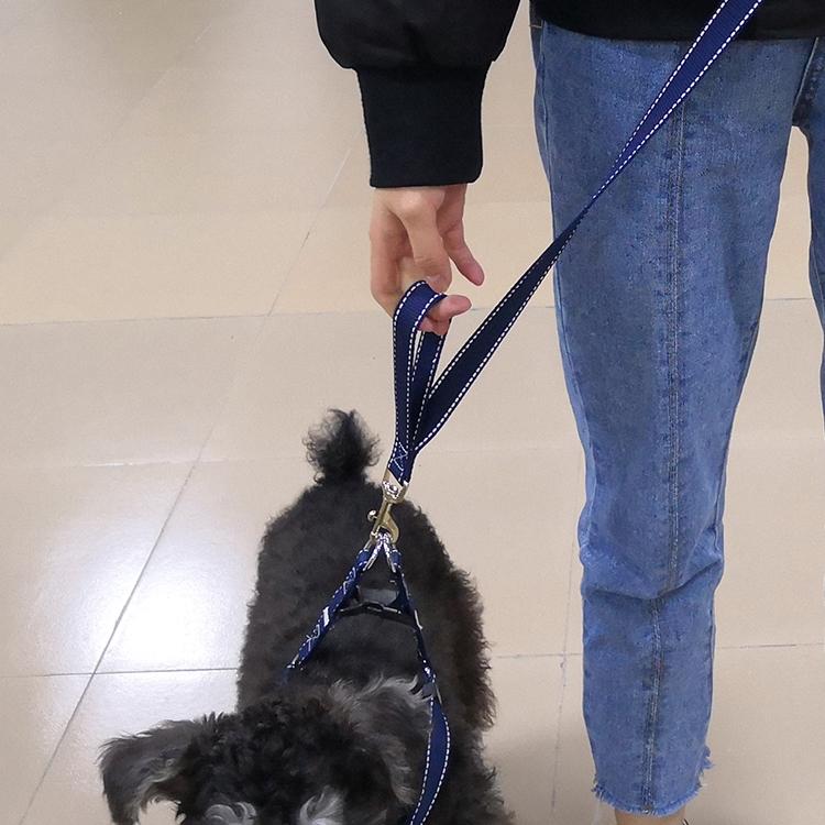 Two handle dog leash (57)