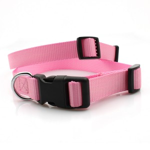 2019 Fashion design dog  nylon pet collar no minimum order