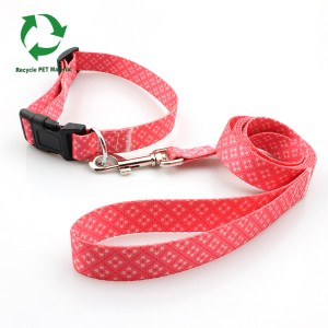 Big Discount Club Wristband – Manufacturer eco friendly recyclable organic dog collar leash set – February Webbing