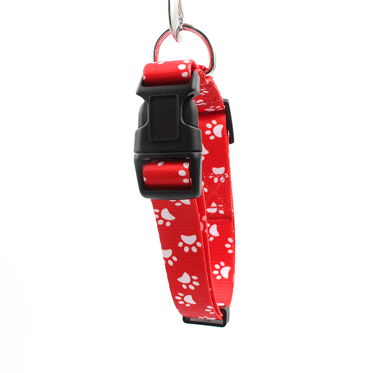 Factory Promotional Nylon Pet Leash -