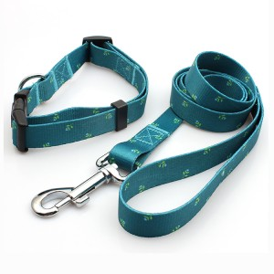 Professional supplier fashion buckle collar dog leash promotional