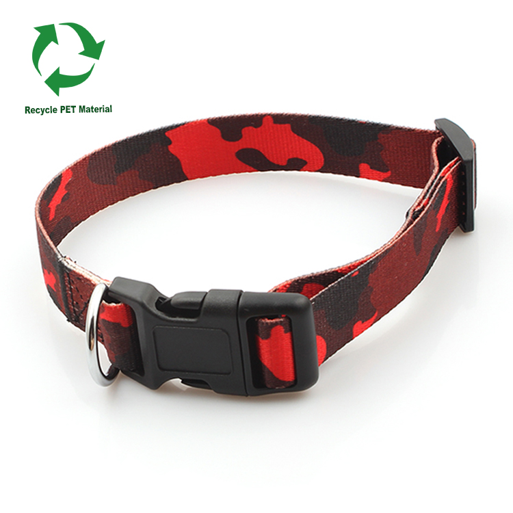 Hot Selling for Wristband Customized - RPET webbing dog and cat safety collar for walking from China supplier – February Webbing