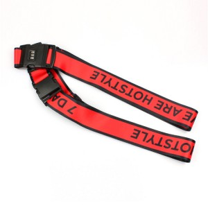 Cheap Polyester Printed Custom Logo Travel Luggage Belt with plastic coded lock