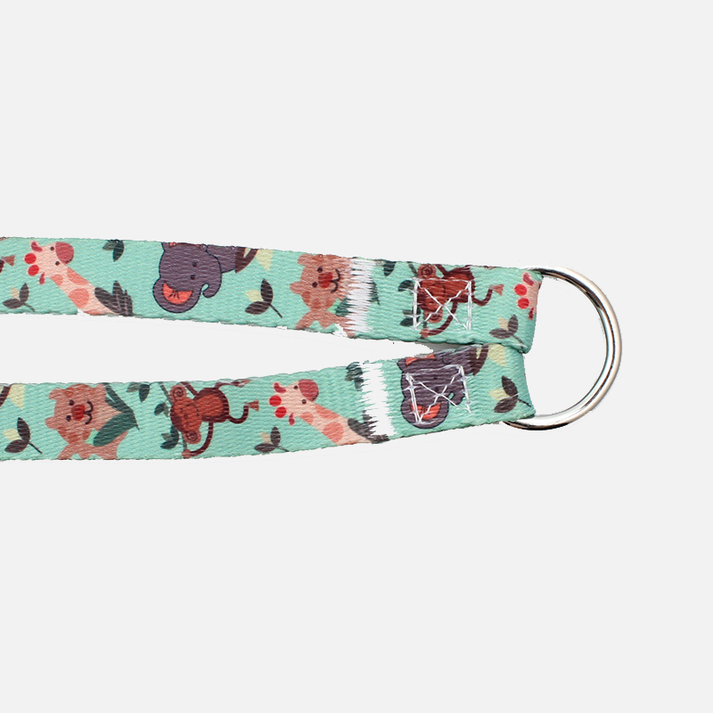 High Performance Collar Pet - Personalized size and design polyester dual dog leash – February Webbing