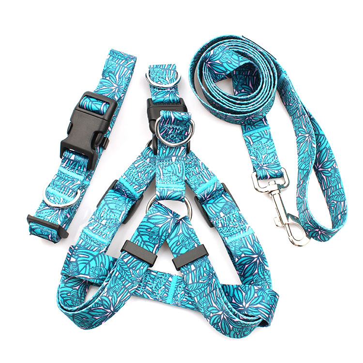 Cheap price Harness Cat - Made in China Eco-friendly Dog Harness Pet collars and leashes sets custom – February Webbing