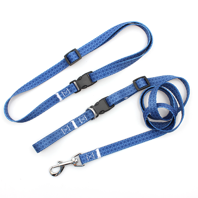 Factory Price For Id Holder With Lanyard - Wholesale factory supplier hands free printed dog leash for running – February Webbing