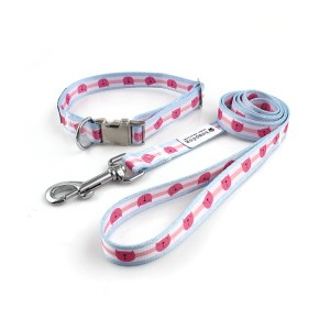 Factory custom design free printed high quality dog collar and leash