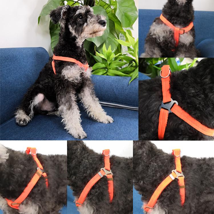 dog harness (2)
