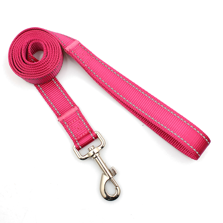 Fixed Competitive Price Luggage Belt With Tsa Lock - professional supplier factory premium nylon reflective dog leash for pet – February Webbing