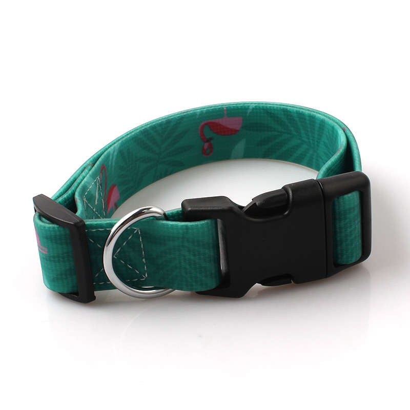 High Quality Custom PVC Waterproof Dog Collar with Quick-Release Buckle Featured Image