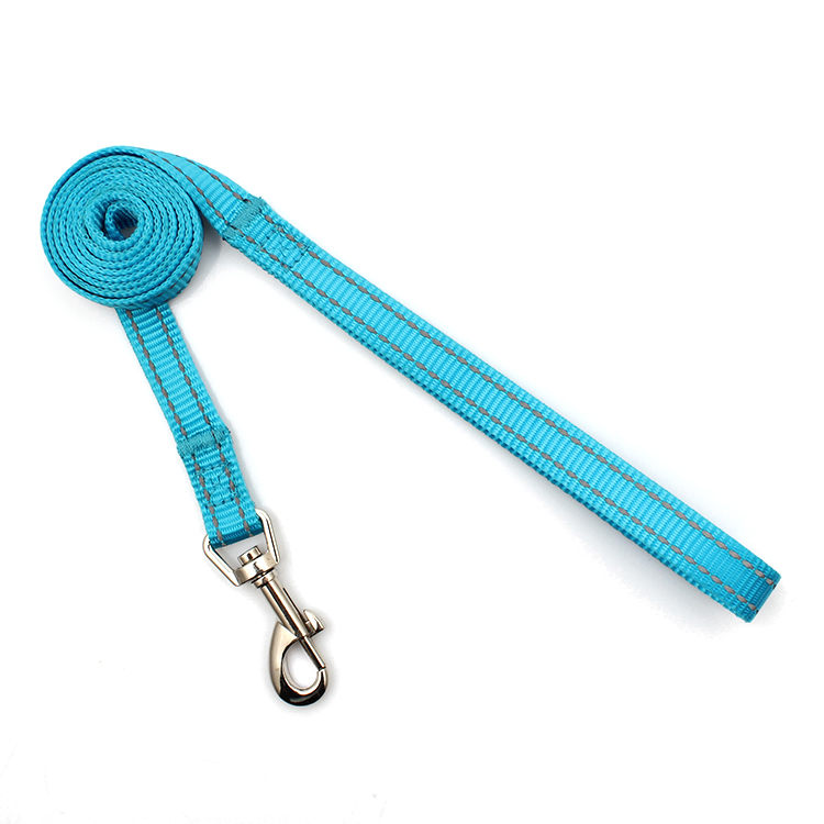Quality Inspection for Wristband Guangzhou - professional supplier factory premium nylon reflective dog leash for pet – February Webbing