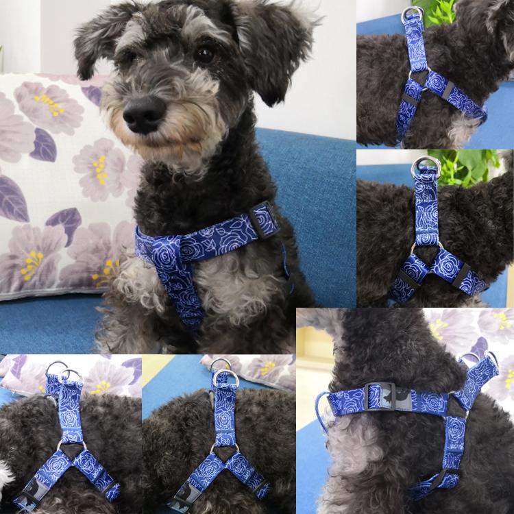 dog harness (10)