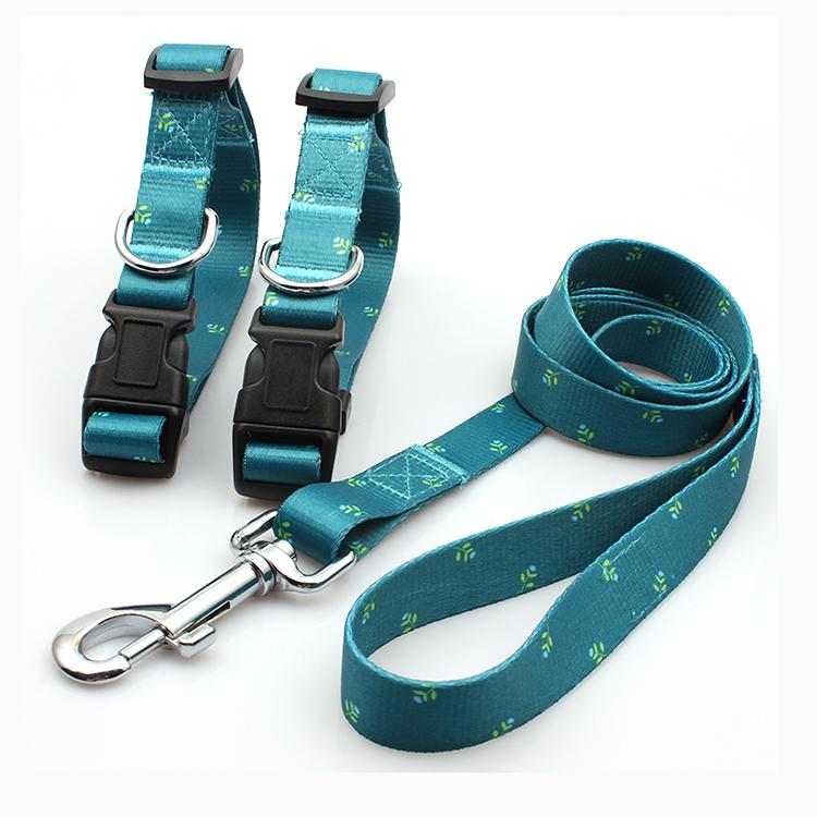 New Fashion Design for Dog Belt - Professional supplier fashion buckle collar dog leash promotional – February Webbing