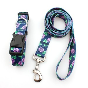 Promotional Pet Products Eco-Friendly Polyester Webbing Dog Collar and Leash