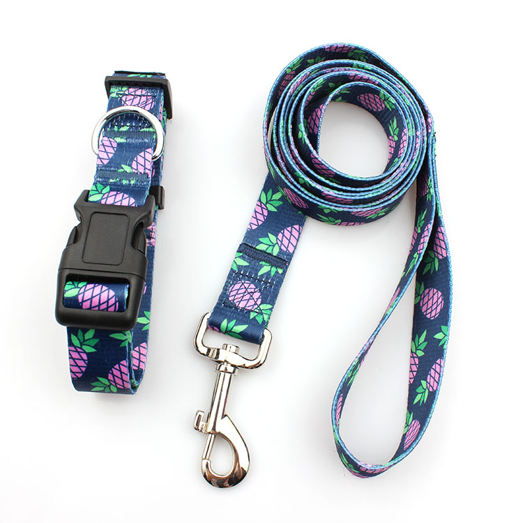 Best Price for Print Pet Leash -