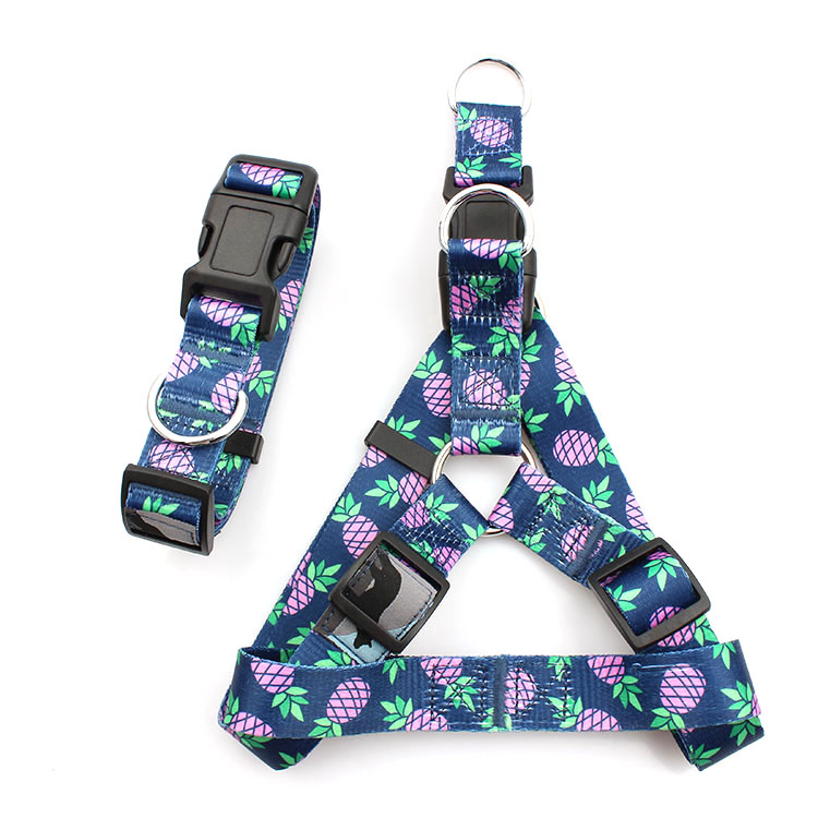 Bottom price No Pull Dog Harness - Heat Transfer Custom Printed LOGO Lovely Manufacturers Pet Product Dog Harness – February Webbing