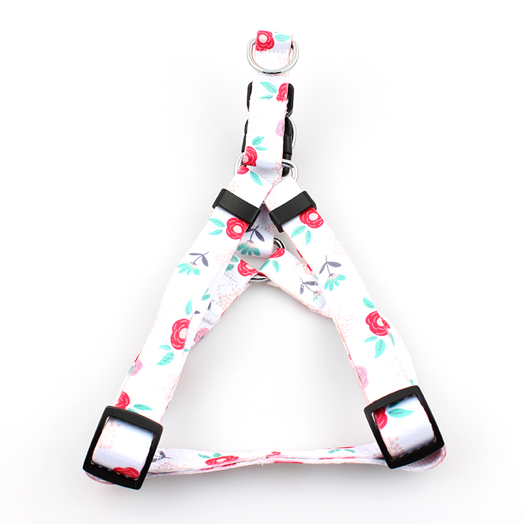 Best Price for Safety Lanyard -