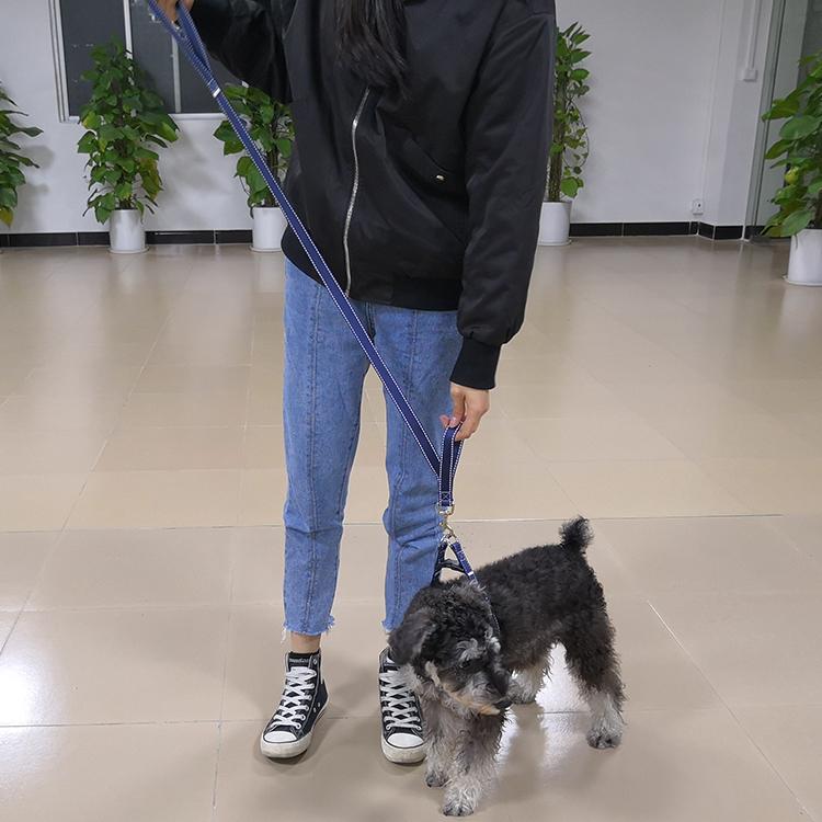 Two handle dog leash (53)