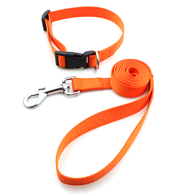PriceList for High Quality Dog Harness - Professional manufacturer breakaway nylon dog collars printed pet leash – February Webbing