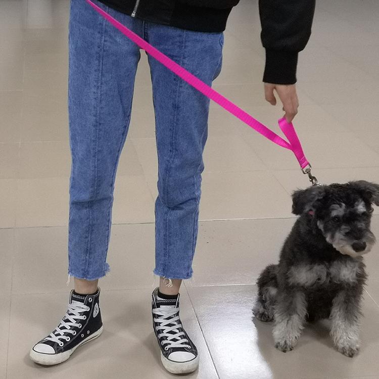 Two handle dog leash (13)