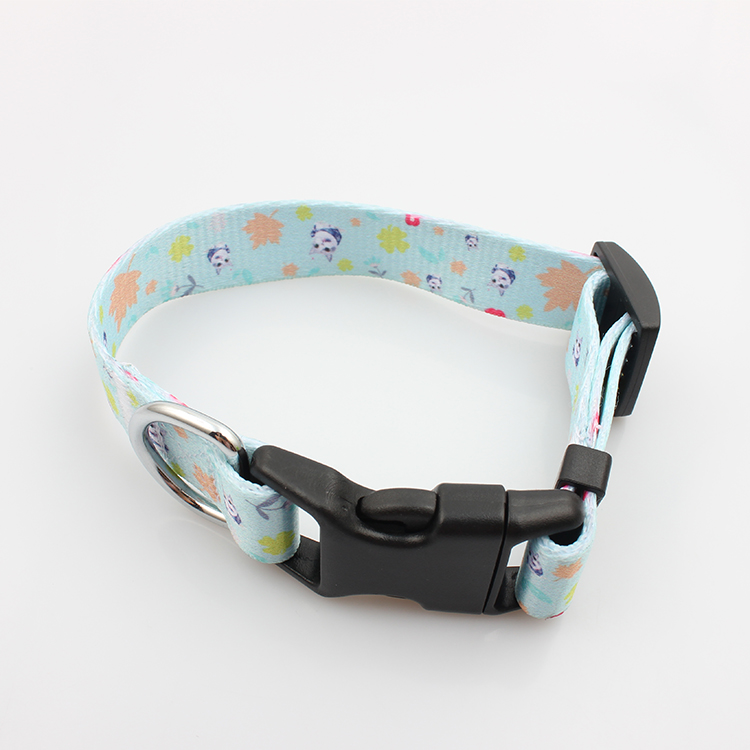 China New Product Cloth Wristband - Striped webbing high quality adjustable dog collar with pet accessories – February Webbing