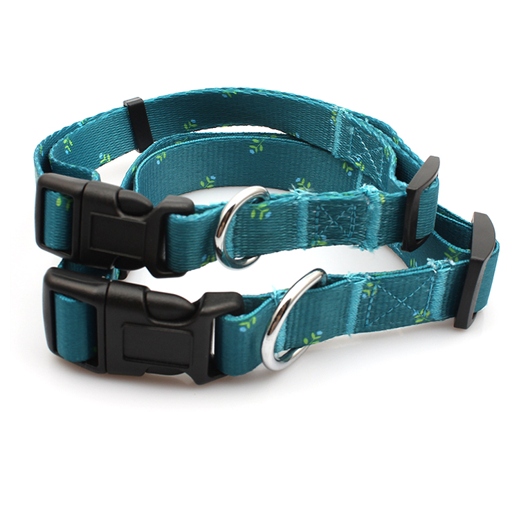 Cheap price Pacifier Holder Clip - Factory quick release printed soft training dog collar with buckle – February Webbing