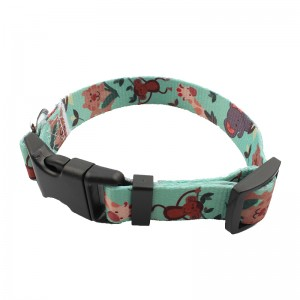 Lowest Price for Double Dog Leash - Wholesale Dog Collar With Adjustable And Breakaway Buckle – February Webbing